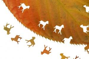 knutselen met bladeren � de speurzoekers