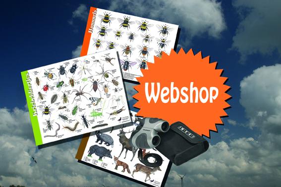 webshop-klein
