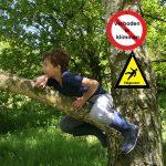 Klim eens in een boom