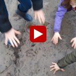 Laat jouw handafdruk achter in de modder
